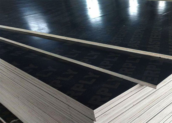 Outdoor Construction Shuttering Plywood Boards Large Format 2440mm X 1220mm