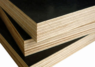 China 15mm Film Faced Plywood supplier