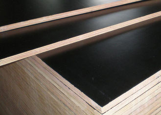 China Finger Jointed 21mm Black Film Faced Plywood supplier