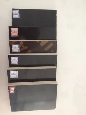 China Lightweight Wbp Grade Plywood , Black Phenolic Plywood 8%-14% Moisture factory