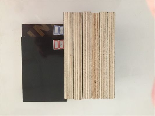 China Furniture Used Phenolic Coated Plywood , WBP Phenolic Plywood Sheets distributor